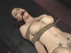 Связывание и сексмашина